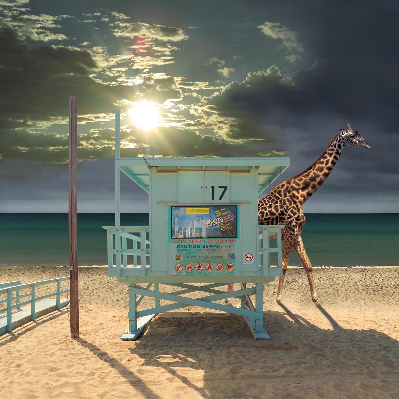 venice-beachklein